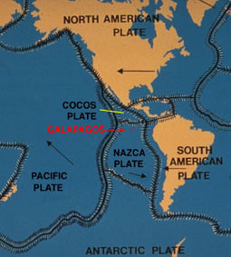 Formation of the          Islands                    Plate Tectonics and the Formation                 of the Galapagos Islands