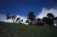 Guatemala pic#4